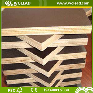 Construction Concrete Formwork Plywood/Formwork (w15493)