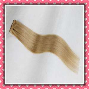 High Quality Brazilian Hair Clip-in Extensions Straight Hair 24inch pictures & photos