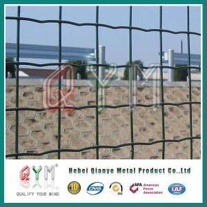Euro Fence / Welded Wire Mesh Fence Factory pictures & photos