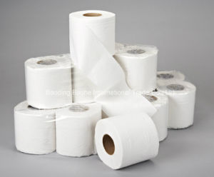 Virgin or Recycled Toilet Paper pictures & photos