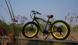 500W New Model Fat Tire Electric Bike Bicycle pictures & photos