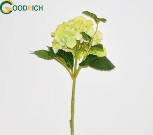 Artificial Hydrangea Flower in Various Designs