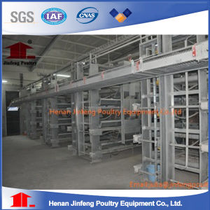 H Type Frame Automatic Layer Battery Equipment Chicken Cage pictures & photos