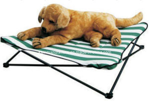 Collapsible Pet Bed pictures & photos