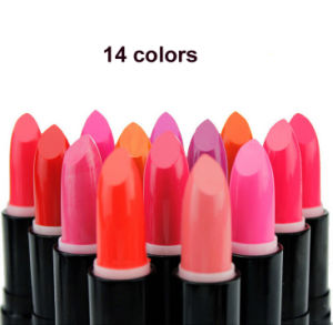 New Lip Cream Dark Colors Lip Pencil Black Violet Blue Red Silvery Gold Special Woman Matte Waterproof Lipstick
