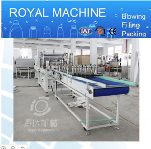Automatic Shrink Wrap Packing Machine pictures & photos