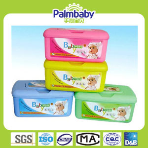 Wet Tissues, Plastic Container Wet Wipes, Box Wipes (BW-014) pictures & photos