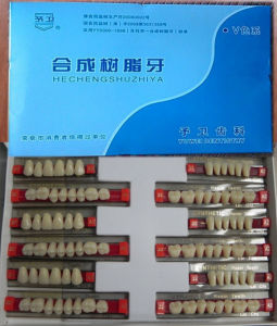 2016 Most Popular 2 Layer Acrylic Teeth