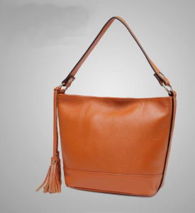 Offering Leather Tote Tassel Bag for Lady (H80481)