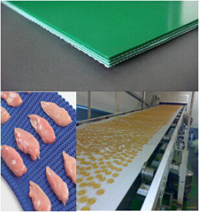 PVC/PU Conveyor Belting in Food Industry pictures & photos