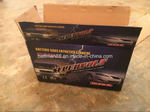 Super Volt N100mf Car Battery pictures & photos