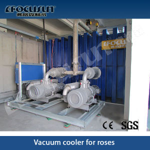 Vacuum Pre-Cooling Machine pictures & photos