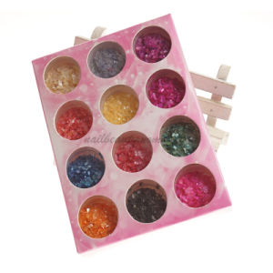3D Art Nails Crushed Shell Powder Decoration Kit (D49) pictures & photos
