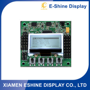 Graphic Customized LCD Module Monitor Display with Control Board pictures & photos