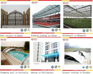 Grade a Polycarbonate Carport, Polycarbonate Roof Awnings, Polycarbonate Skylight pictures & photos