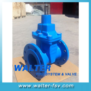 Double Flanged Cast Iron Gate Valve Pn25 pictures & photos