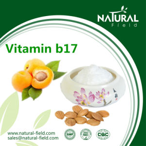 Herbal Extract High Quality Vitamin B17/ Amygdalin Powder CAS: 29883-15-6 pictures & photos