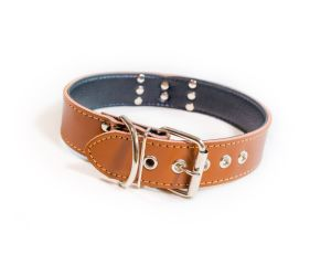 Leather Pet Dog Collar, Adjustable Dog Collar pictures & photos