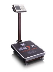 Electronic Weighing Platform Scale 100kg to 600kg Dh-60de pictures & photos