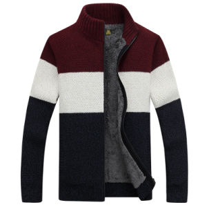 Men′s Winter Sweater or Knitwear (262-1) pictures & photos