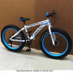 China Manufacturer Wholesale Fat Snow Bike (ly-a-119) pictures & photos