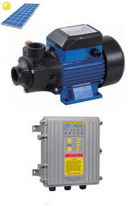 210W Brass Impeller Vortex DC Solar Pump pictures & photos