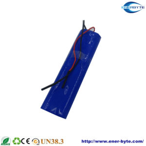 Lithium Battery Pack 12V40ah for Energy Storage pictures & photos