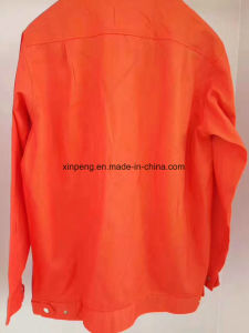 Specializing in The Production of Long Sleeved Jacket, Optional Fabric, Style pictures & photos