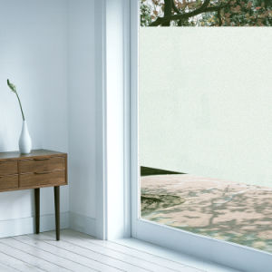 Static Cling Window Film 2D Series-S151b pictures & photos