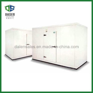 Food Standard Cold Room Cold Storage (DCM-200) pictures & photos