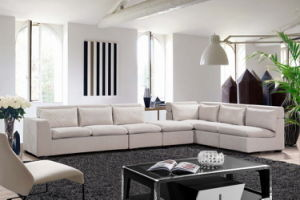 Combination Chaise and Lounge Sofa Set with Cushion pictures & photos