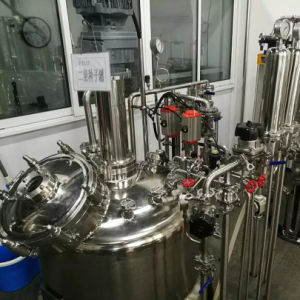 10000 Liters Production Stainless Steel Fermenter pictures & photos