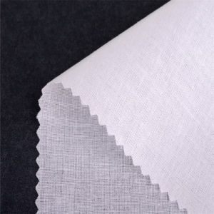 Woven Resin Interlining/ Collar Interlining /Shirts 40581s pictures & photos