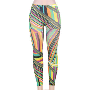 Wholesale Super Hot Sale New Arrivals OEM Services Fabulous Seamless Sexy Leggings  pictures & photos
