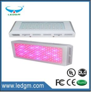 2017 90W-600W LED Square Grow Lights; Light Ratio: 8: 1, 7: 2, 7: 1: 1 with The Mixture of Red, Blue, Orange, Yellow and White Lights pictures & photos