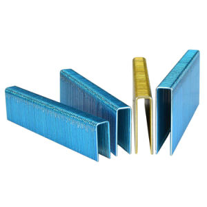 N Series Staples for Building, Furnituring pictures & photos