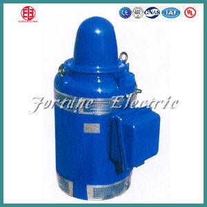 Vhs Vertical Hollow Shaft NEMA Deep Well Pump Motor pictures & photos