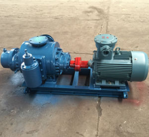 Horizontal Twin Screw Pump Oil Pump pictures & photos