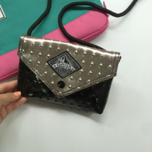 Fashion Gun Color Black Mixed Color PU Ladies Bag (M009-16)