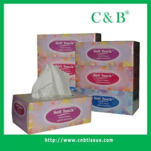 Box Tissue 6b-2 pictures & photos