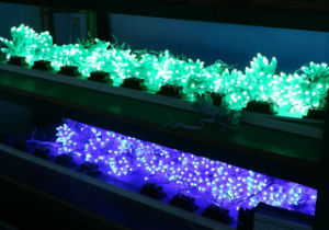 LED Pixel String for Advertising and Decoration pictures & photos