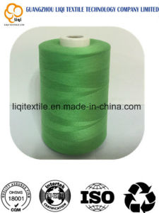 Polyester Thread and Rayon Thread for Embroidery Thread pictures & photos