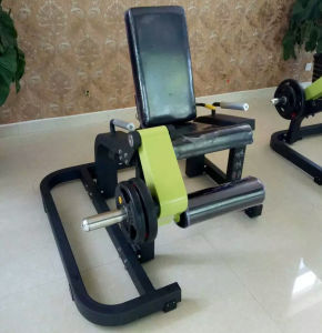 Excellent Gym Equipment Leg Extension (SM-2014) pictures & photos