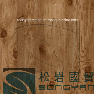 Wooden Design PVC Coated Steel for Door Panel pictures & photos