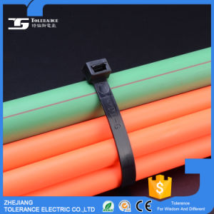 Electrical Accessories Tying Usage Nylon Cable Tie