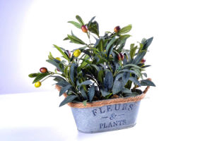 Artificial Plant of Olive in Tin Planter with Decorative Hemp Rope for Decoration in Home/Office pictures & photos