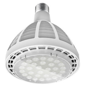 E27 Base 30W PAR30 LED Lamp 2016 Ce RoHS Approval