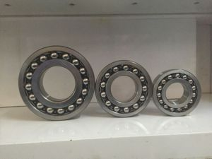 Bearing Factory China Bearing 2210 Self-Aligning Bearing pictures & photos