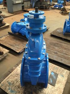 Ductile Iron Resilient Gate Valve, Non-Rising Stem with ISO5210 Top Flange pictures & photos