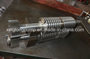 Rotor of Twin Screw Pump pictures & photos